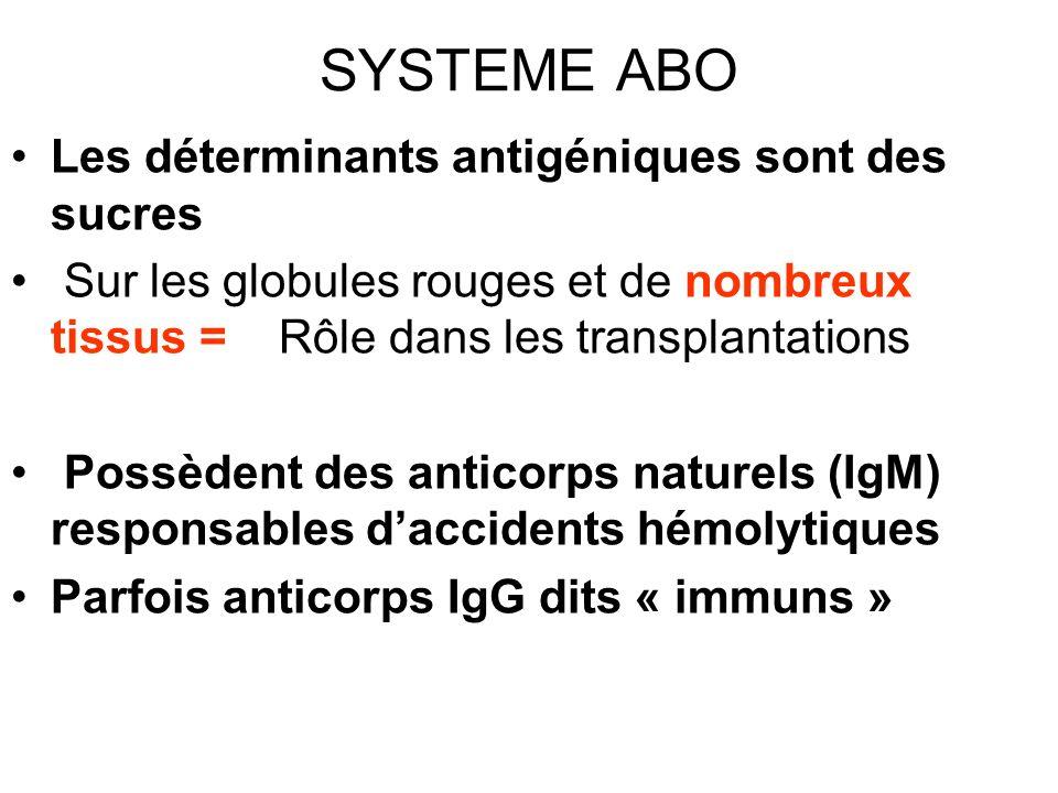 SYSTEME ABO Les déterminants antigéniques sont des sucres Sur les globules rouges et de nombreux tissus = Rôle dans les transplantations Possèdent des