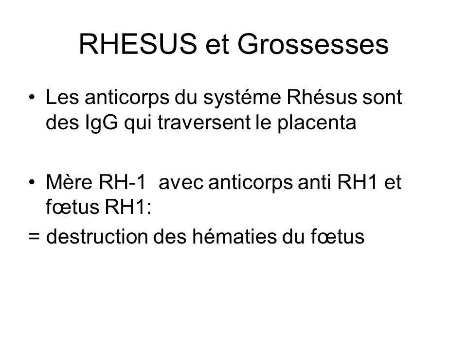 RHESUS et Grossesses Les anticorps du systéme Rhésus sont des IgG qui traversent le placenta Mère RH-1 avec anticorps anti RH1 et fœtus RH1: = destruc