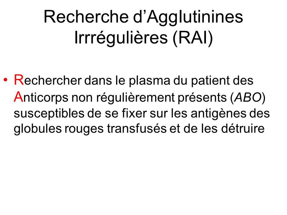 Recherche dAggIutinines Irrrégulières (RAI) R echercher dans le plasma du patient des A nticorps non régulièrement présents (ABO) susceptibles de se f
