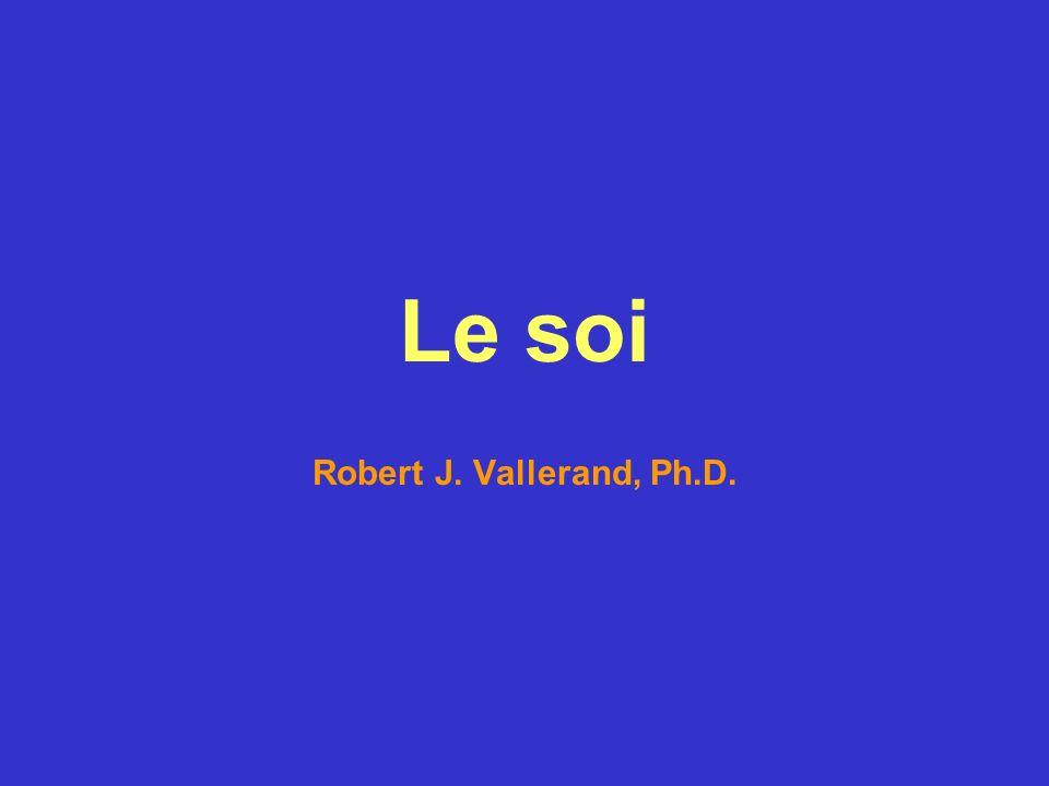 Exemples dénoncés servant à mesurer lestime de soi dispositionnelle Items tirés de la validation canadienne-française (Vallières & Vallerand, 1990) de léchelle destime de soi dispositionnelle (Rosenberg, 1965).