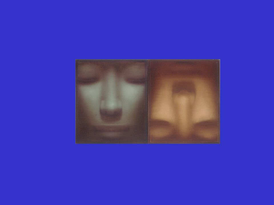 Les schémas sur le soi Le soi peut être vu comme un ensemble de schémas portant sur soi.