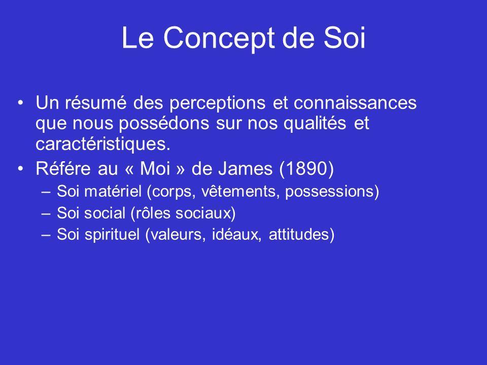 Différences individuelles dans la présentation de soi Monitorage de soi (Snyder, 1987) –Monitorage de soi élevé Implique une conscience de soi publique.