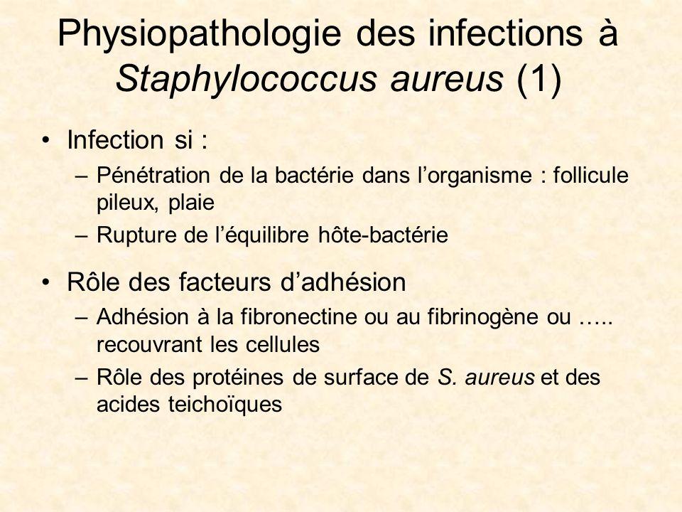 Physiopathologie des infections à Staphylococcus aureus (1) Infection si : –Pénétration de la bactérie dans lorganisme : follicule pileux, plaie –Rupt