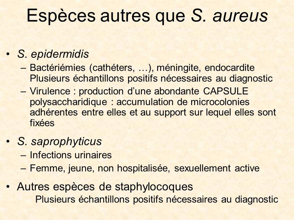 Espèces autres que S. aureus S. epidermidis –Bactériémies (cathéters, …), méningite, endocardite Plusieurs échantillons positifs nécessaires au diagno