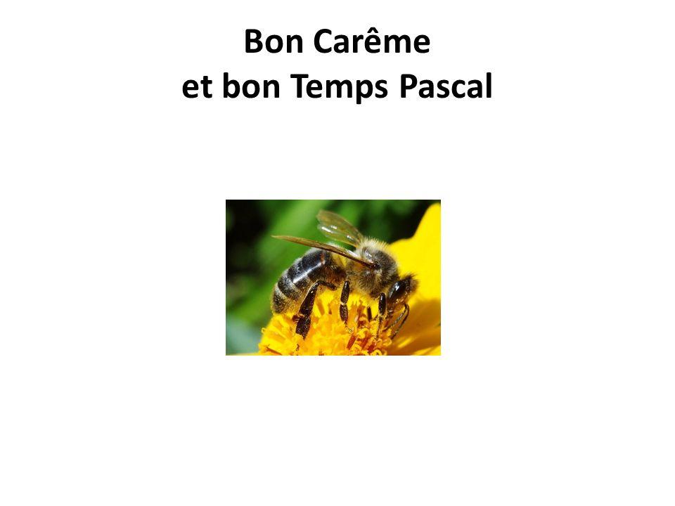 Bon Carême et bon Temps Pascal