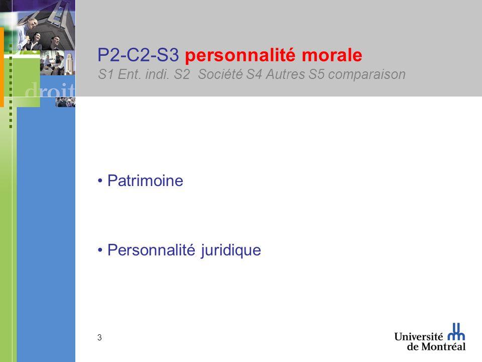 3 P2-C2-S3 personnalité morale S1 Ent. indi. S2 Société S4 Autres S5 comparaison Patrimoine Personnalité juridique