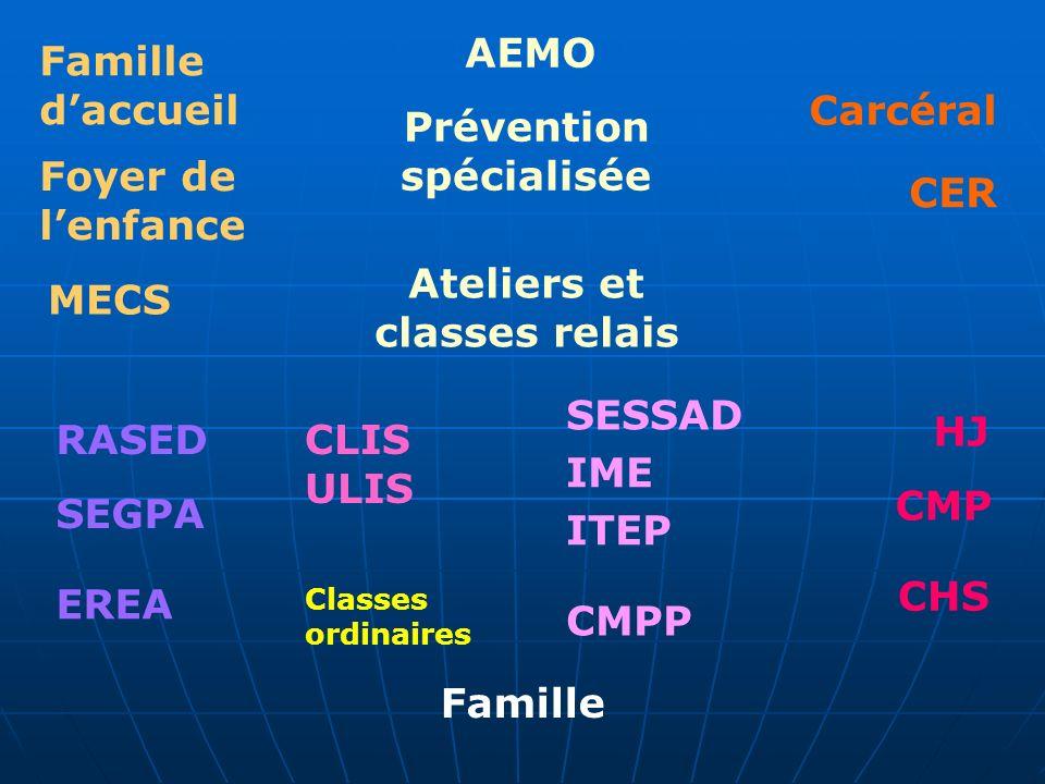 Famille daccueil Foyer de lenfance MECS AEMO Prévention spécialisée Ateliers et classes relais Carcéral CER RASED SEGPA CLIS ULIS Classes ordinaires C