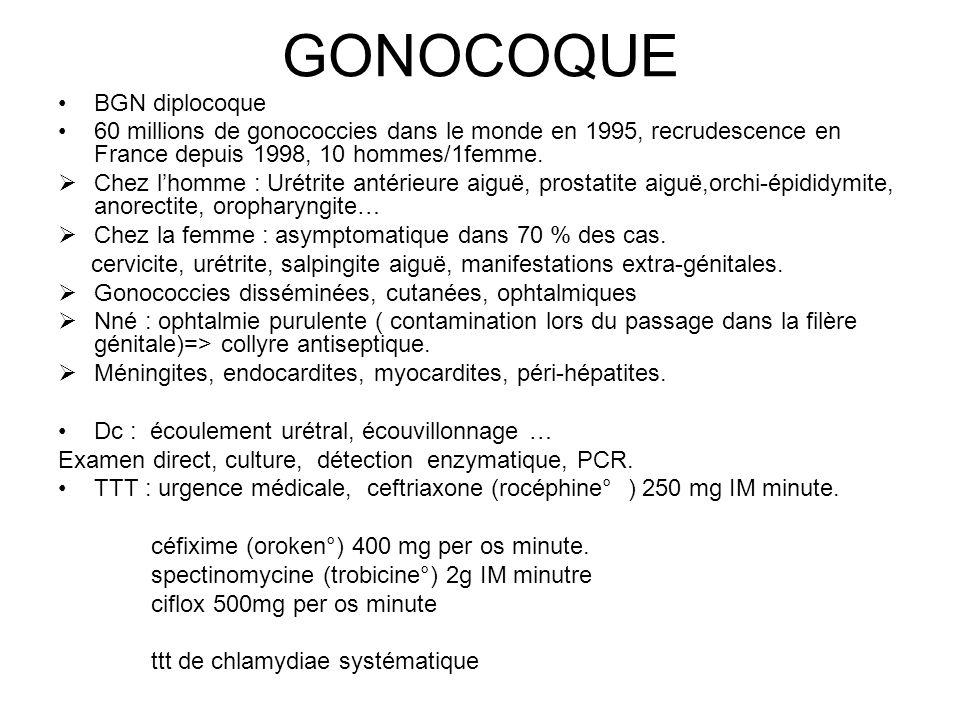 GONOCOQUE BGN diplocoque 60 millions de gonococcies dans le monde en 1995, recrudescence en France depuis 1998, 10 hommes/1femme.