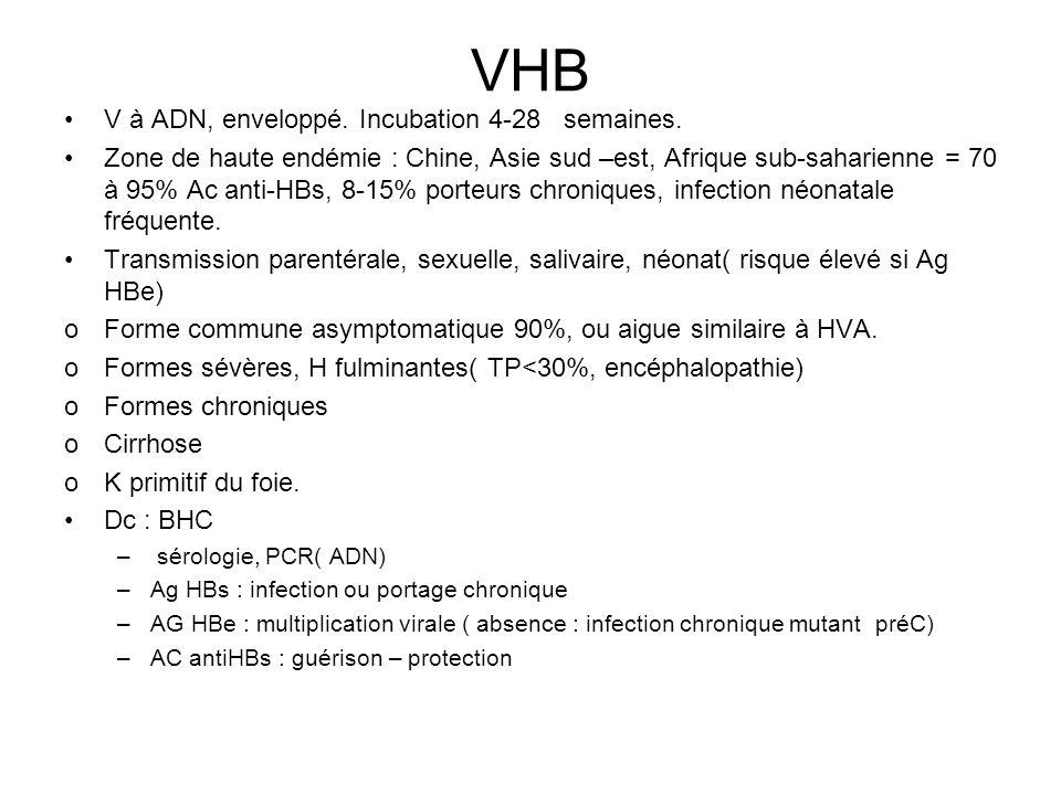 VHB V à ADN, enveloppé.Incubation 4-28 semaines.