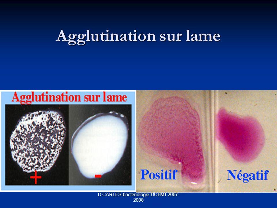 D.CARLES-bactériologie-DCEM1 2007- 2008 Agglutination sur lame