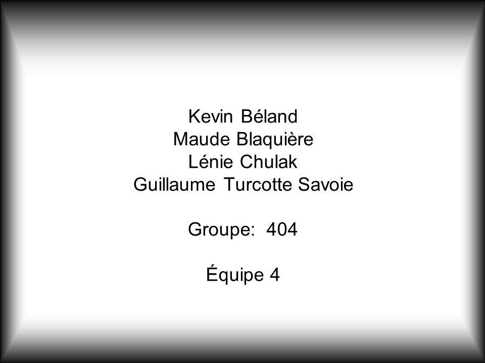 Kevin Béland Maude Blaquière Lénie Chulak Guillaume Turcotte Savoie Groupe: 404 Équipe 4