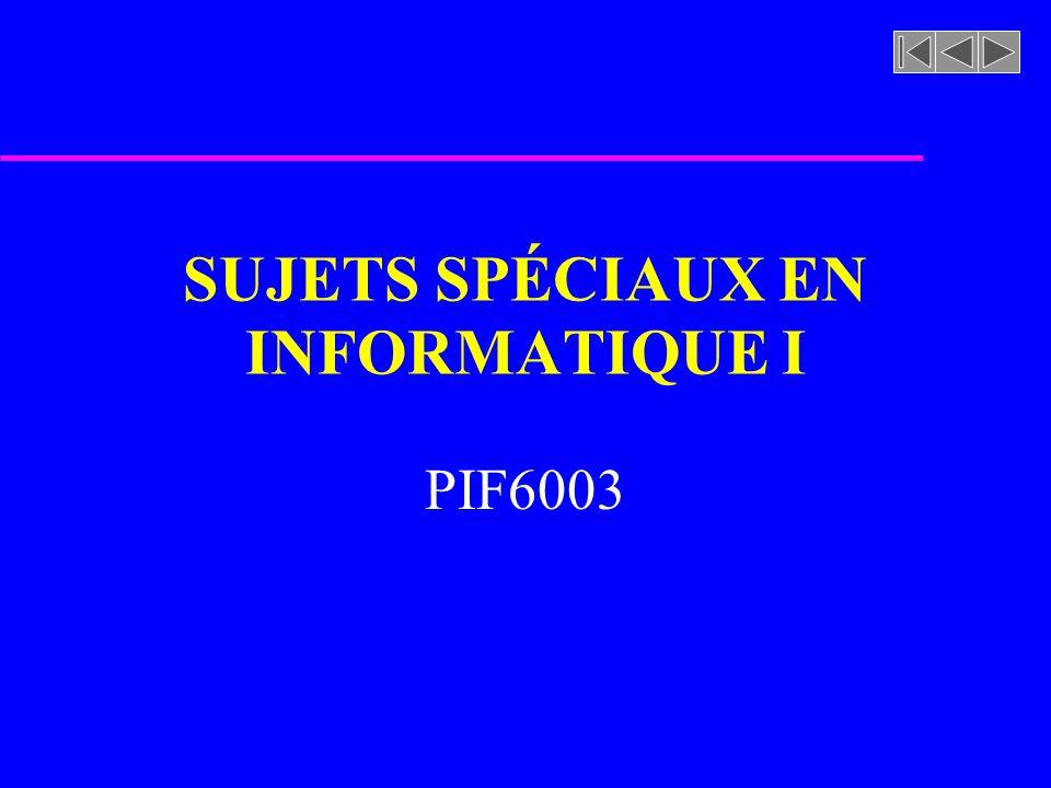 SUJETS SPÉCIAUX EN INFORMATIQUE I PIF6003