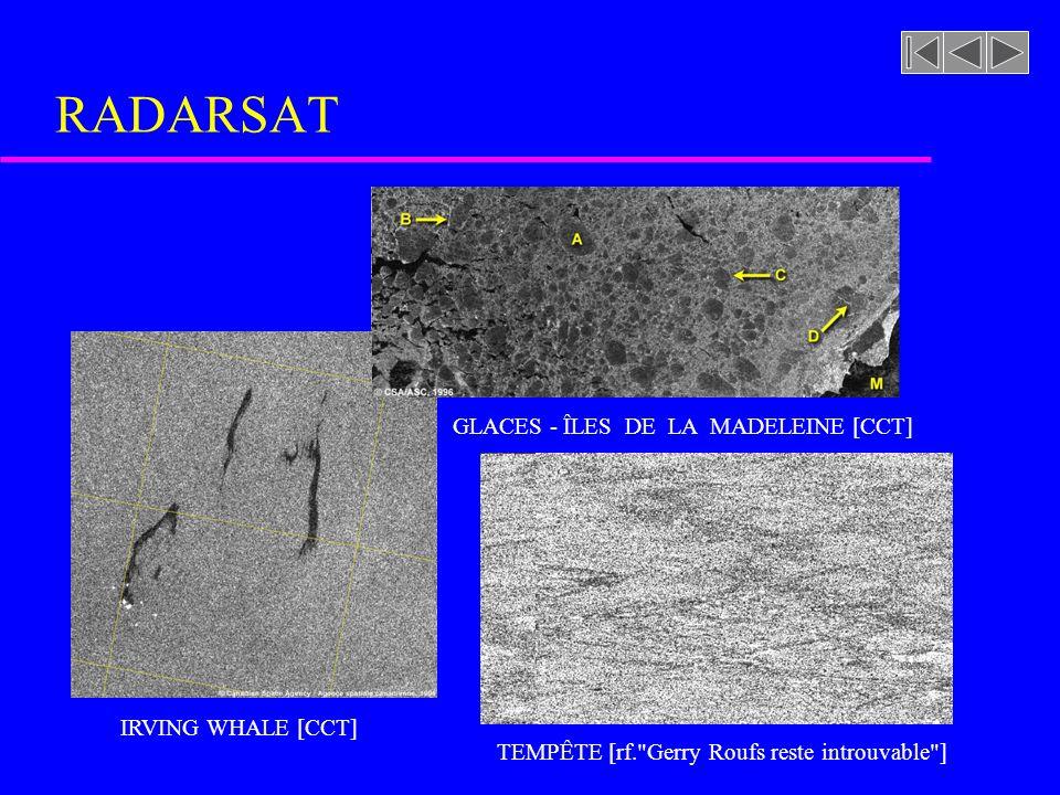 DÉTECTION DE BATEAU [CCT] RADARSAT IRVING WHALE [CCT] TEMPÊTE [rf. Gerry Roufs reste introuvable ] GLACES - ÎLES DE LA MADELEINE [CCT]