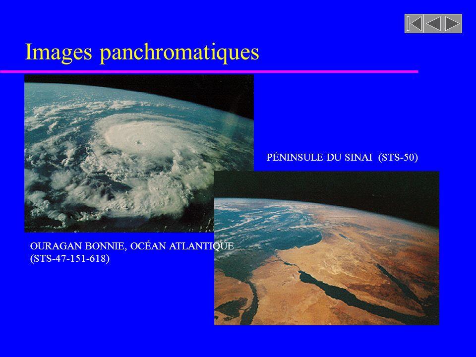 Images panchromatiques OURAGAN BONNIE, OCÉAN ATLANTIQUE (STS-47-151-618) PÉNINSULE DU SINAI (STS-50)