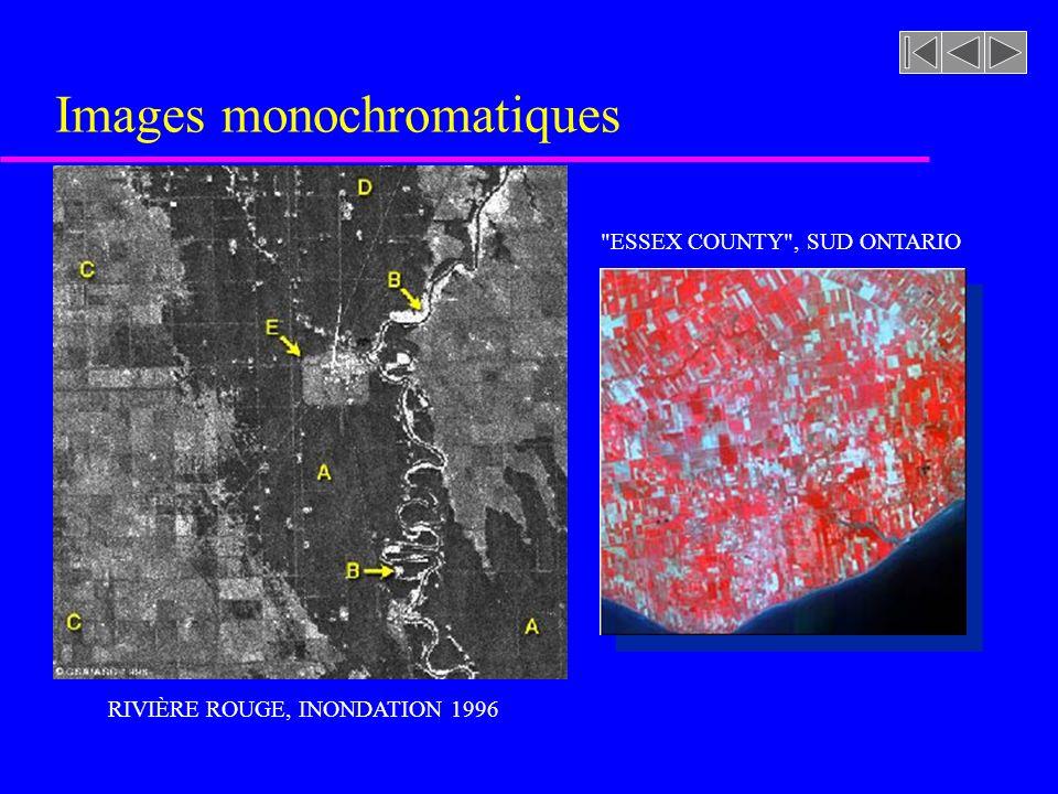 Images monochromatiques RIVIÈRE ROUGE, INONDATION 1996