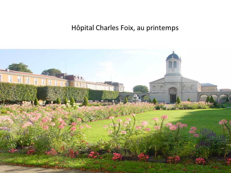 Hôpital Charles Foix, au printemps