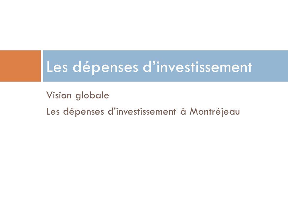Vision globale Les dépenses dinvestissement à Montréjeau Les dépenses dinvestissement