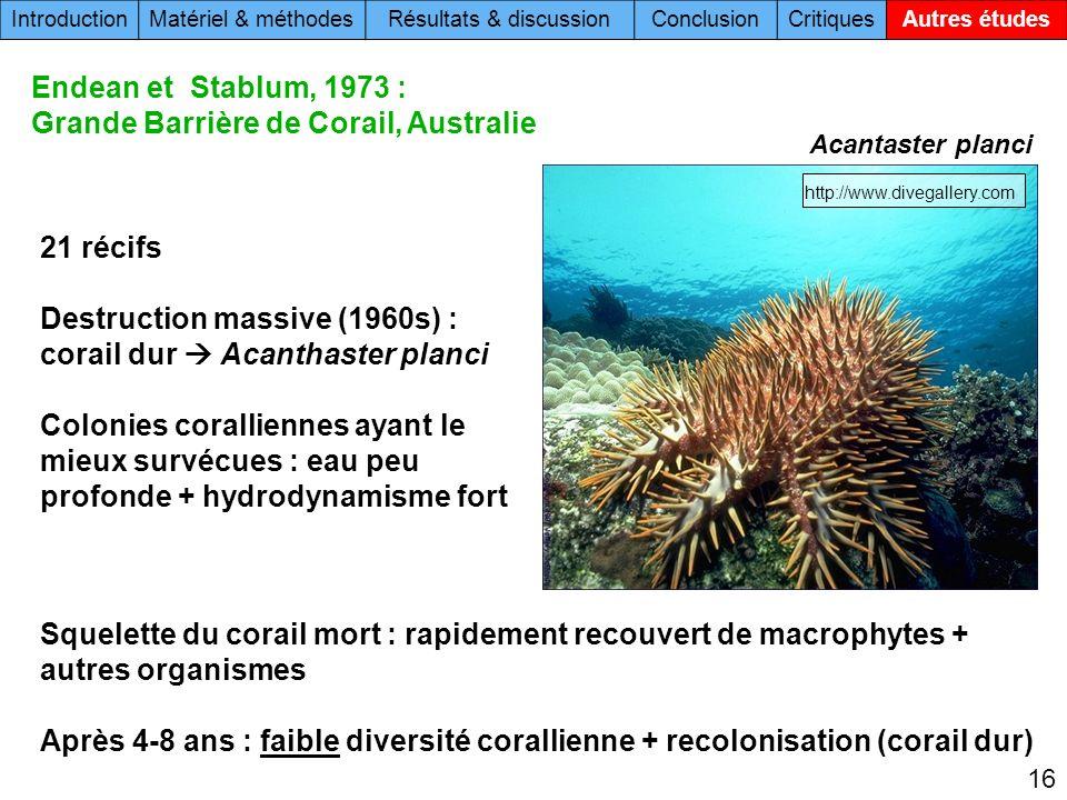 16 Acantaster planci 21 récifs Destruction massive (1960s) : corail dur Acanthaster planci Colonies coralliennes ayant le mieux survécues : eau peu pr