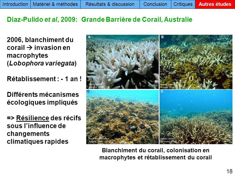 18 Blanchiment du corail, colonisation en macrophytes et rétablissement du corail 2006, blanchiment du corail invasion en macrophytes (Lobophora variegata) Rétablissement : - 1 an .