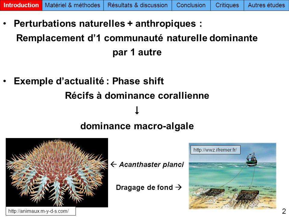 Perturbations naturelles + anthropiques : Remplacement d1 communauté naturelle dominante par 1 autre Exemple dactualité : Phase shift Récifs à dominance corallienne dominance macro-algale IntroductionMatériel & méthodesRésultats & discussionConclusionCritiquesAutres études 2 http://wwz.ifremer.fr/ http://animaux.m-y-d-s.com/ Acanthaster planci Dragage de fond