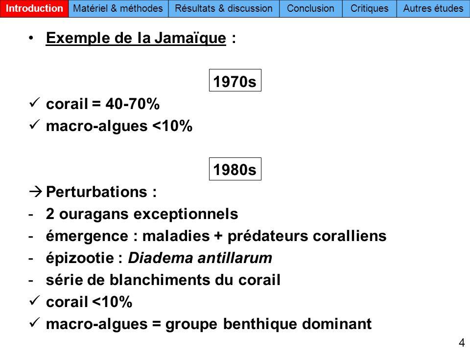 Exemple de la Jamaïque : 1970s corail = 40-70% macro-algues <10% 1980s Perturbations : -2 ouragans exceptionnels -émergence : maladies + prédateurs coralliens -épizootie : Diadema antillarum -série de blanchiments du corail corail <10% macro-algues = groupe benthique dominant 4 IntroductionMatériel & méthodesRésultats & discussionConclusionCritiquesAutres études