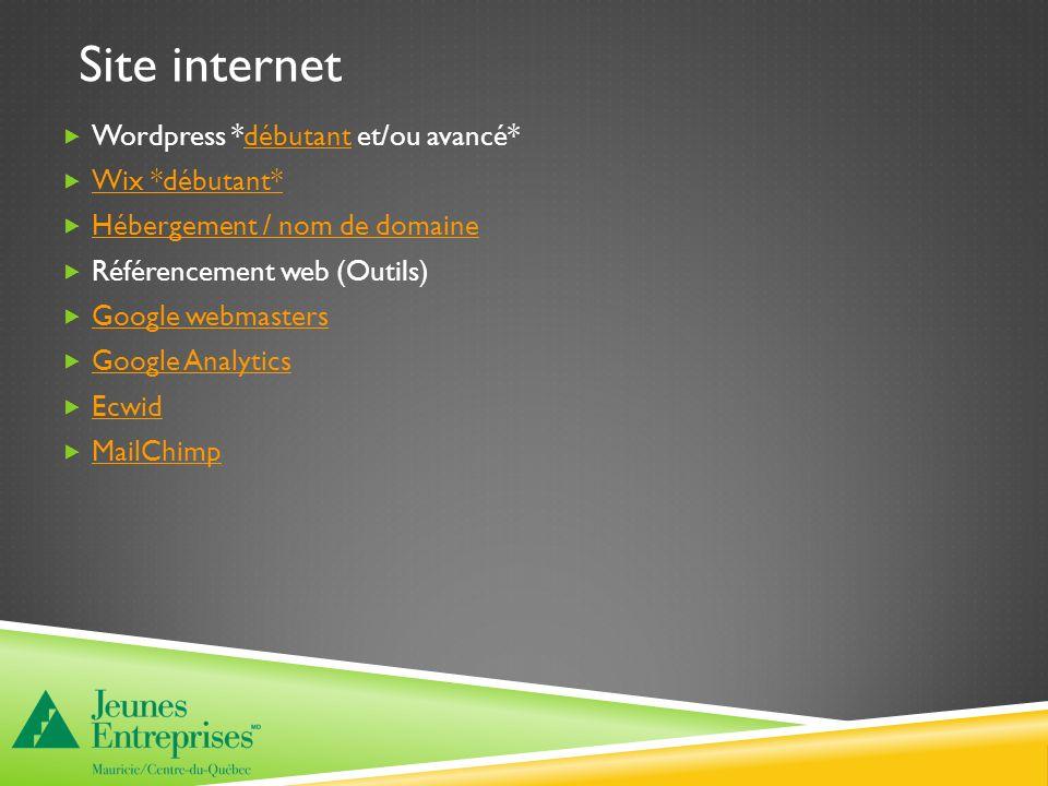 Site internet Wordpress *débutant et/ou avancé*débutant Wix *débutant* Hébergement / nom de domaine Référencement web (Outils) Google webmasters Google Analytics Ecwid MailChimp