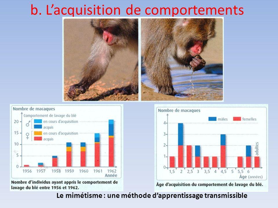 b. Lacquisition de comportements Le mimétisme : une méthode dapprentissage transmissible