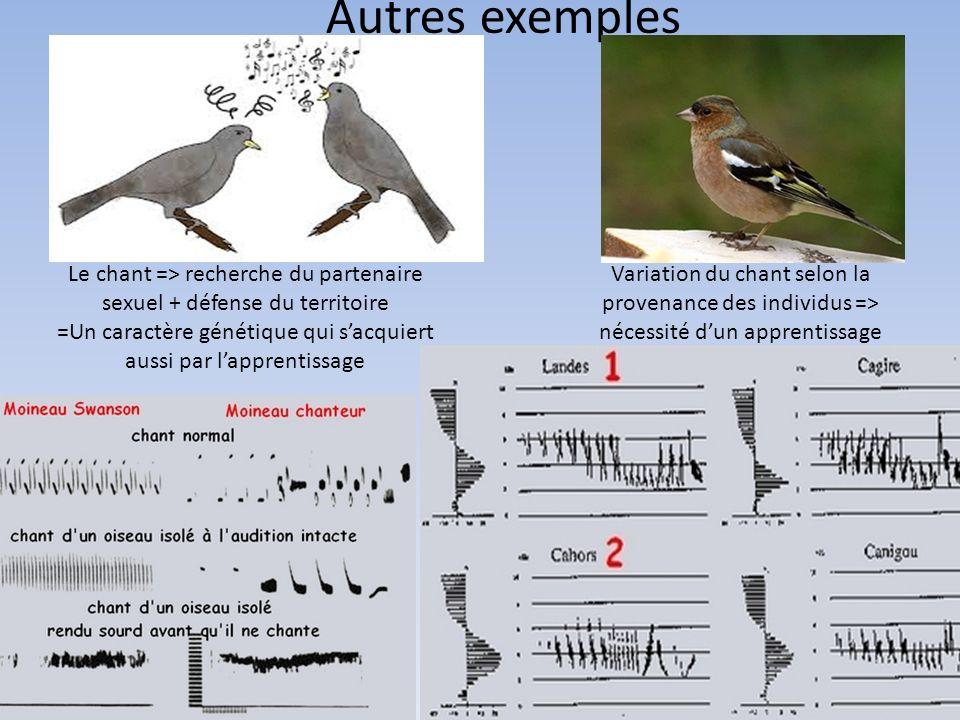 Autres exemples Le chant => recherche du partenaire sexuel + défense du territoire =Un caractère génétique qui sacquiert aussi par lapprentissage Vari