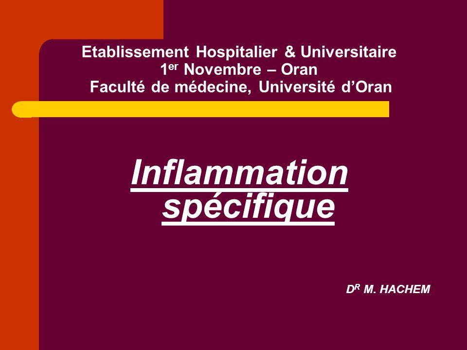 Etablissement Hospitalier & Universitaire 1 er Novembre – Oran Faculté de médecine, Université dOran Inflammation spécifique D R M. HACHEM