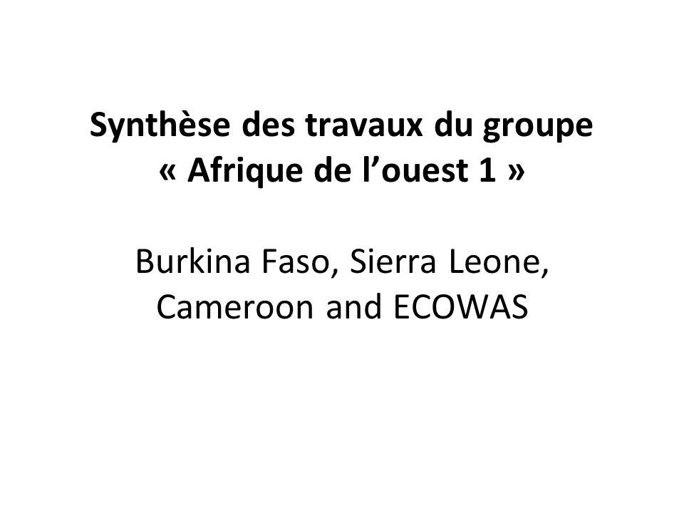 Synthèse des travaux du groupe « Afrique de louest 1 » Burkina Faso, Sierra Leone, Cameroon and ECOWAS