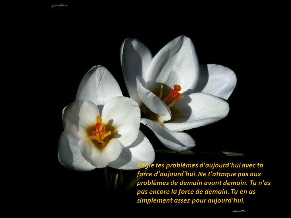 Règle tes problèmes d aujourd hui avec ta force d aujourd hui.
