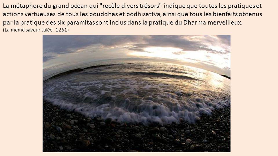 La métaphore du grand océan qui