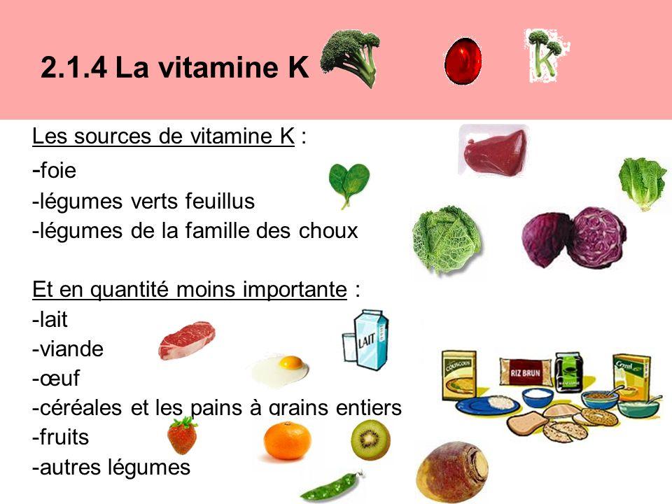 Les sources de vitamine K : - foie -légumes verts feuillus -légumes de la famille des choux Et en quantité moins importante : -lait -viande -œuf -céréales et les pains à grains entiers -fruits -autres légumes 2.1.4 La vitamine K