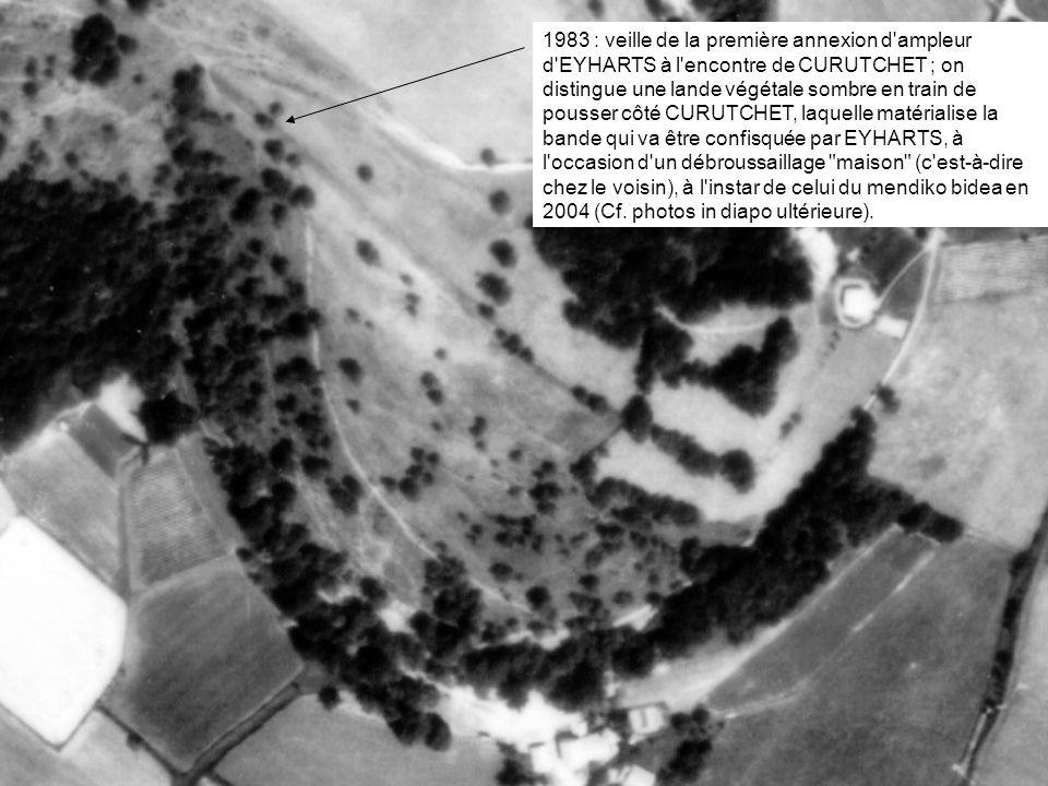 1983 : veille de la première annexion d'ampleur d'EYHARTS à l'encontre de CURUTCHET ; on distingue une lande végétale sombre en train de pousser côté