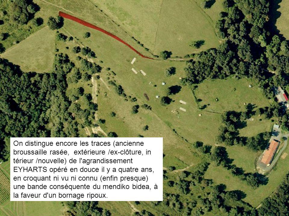 On distingue encore les traces (ancienne broussaille rasée, extérieure /ex-clôture, in térieur /nouvelle) de l'agrandissement EYHARTS opéré en douce i