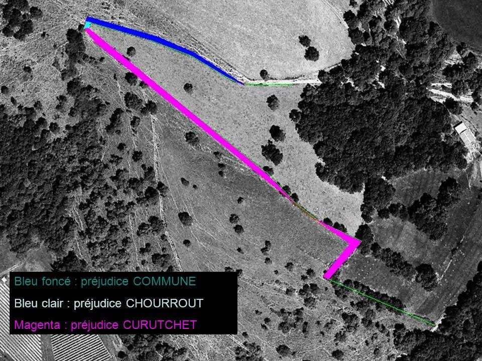 1983 : veille de la première annexion d ampleur d EYHARTS à l encontre de CURUTCHET ; on distingue une lande végétale sombre en train de pousser côté CURUTCHET, laquelle matérialise la bande qui va être confisquée par EYHARTS, à l occasion d un débroussaillage maison (c est-à-dire chez le voisin), à l instar de celui du mendiko bidea en 2004 (Cf.