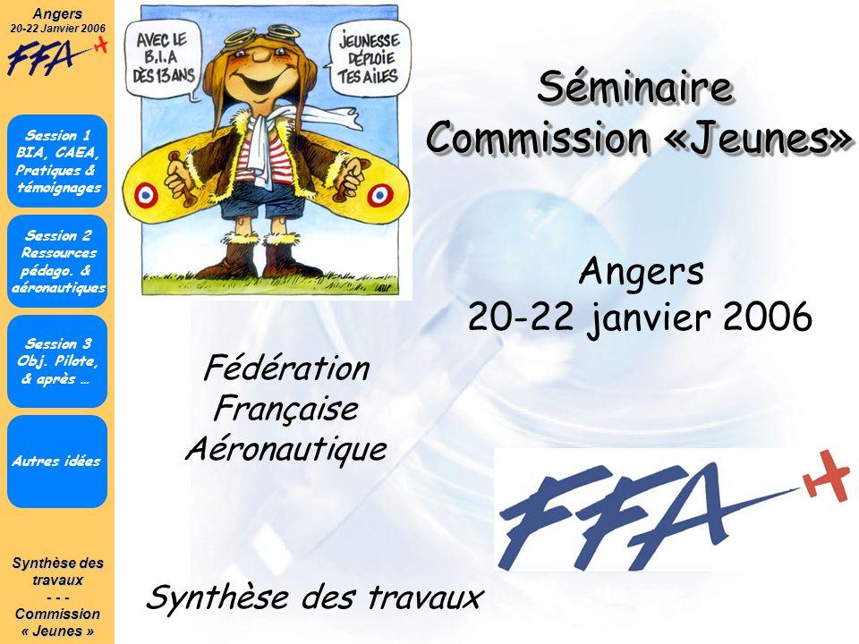 Synthèse des travaux - - - Commission« Jeunes »Angers 20-22 Janvier 2006 Autres idées Session 1 BIA, CAEA, Pratiques & témoignages Angers 20-22 janvie