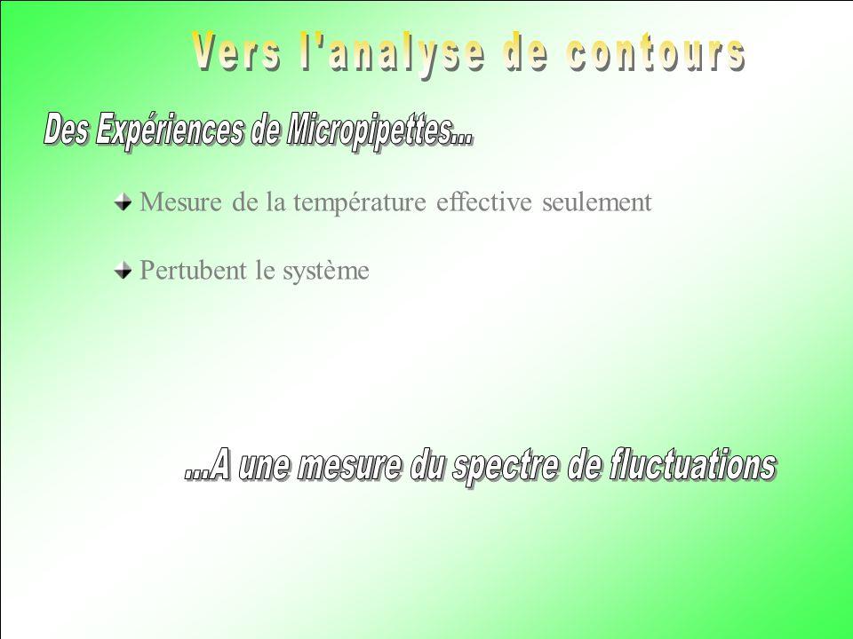 Mesure de la température effective seulement Pertubent le système