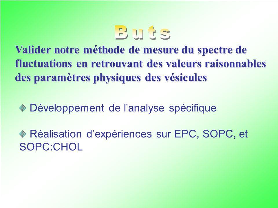 Valider notre méthode de mesure du spectre de fluctuations en retrouvant des valeurs raisonnables des paramètres physiques des vésicules Développement