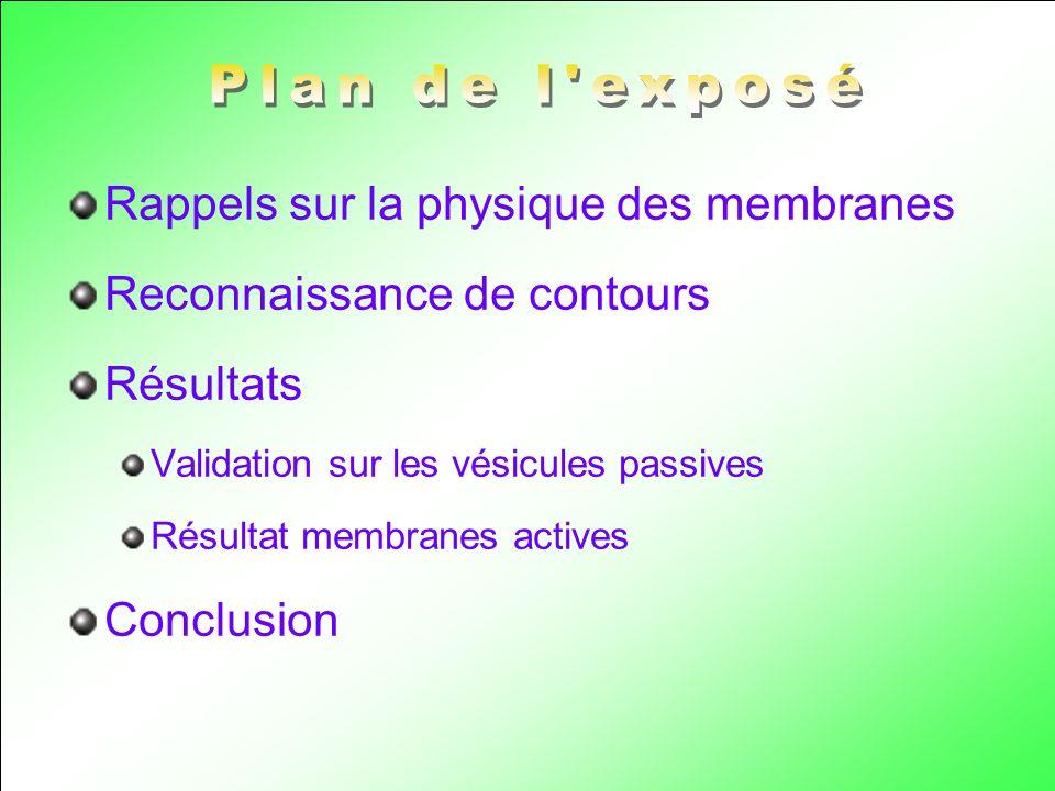 Rappels sur la physique des membranes Reconnaissance de contours Résultats Validation sur les vésicules passives Résultat membranes actives Conclusion