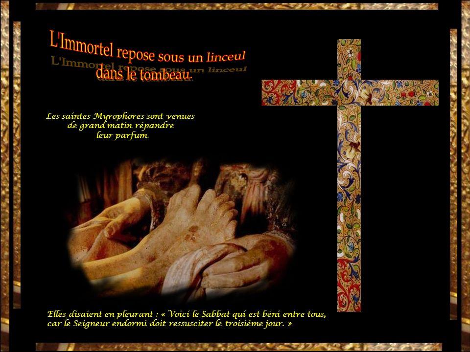 « Tu reposes, endormi.Qui pourrait te réveiller, Ô notre Roi .