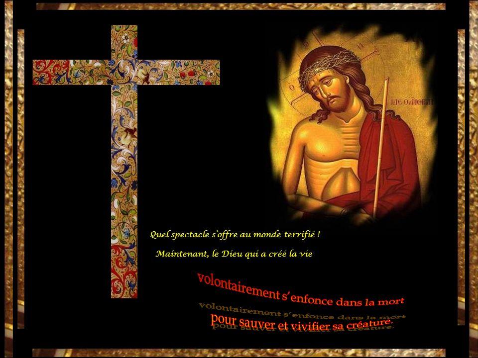 « Ô mon Fils », disait la Vierge immaculée, « moi qui sans douleur tavais donné le jour, seule entre les femmes, je subis aussi la plus rude peine en te voyant souffrir ainsi.