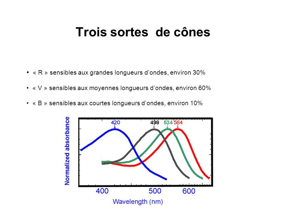 …ce qui permet de tracer le diagramme RGB de lensemble des couleurs :