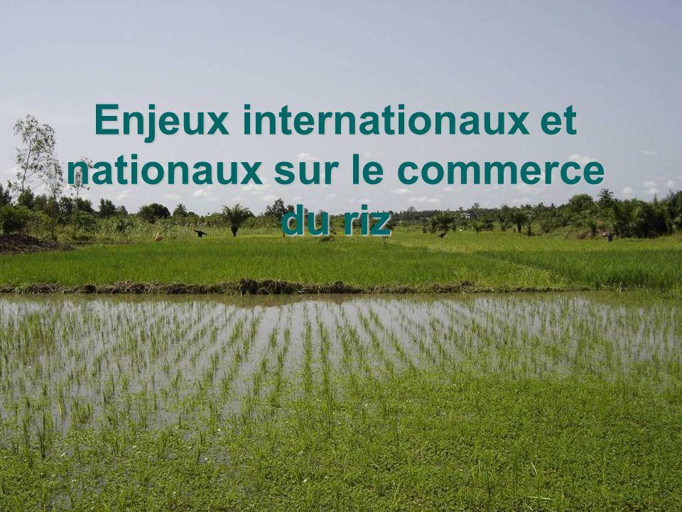 26/05/05 Journée du riz à Lokossa Comité riz UDP Mono Couffo Enjeux internationaux et nationaux sur le commerce du riz