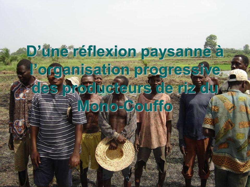 26/05/05 Journée du riz à Lokossa Comité riz UDP Mono Couffo Dune réflexion paysanne à lorganisation progressive des producteurs de riz du Mono-Couffo