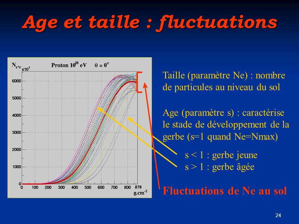 24 Age et taille : fluctuations Taille (paramètre Ne) : nombre de particules au niveau du sol Age (paramètre s) : caractérise le stade de développemen