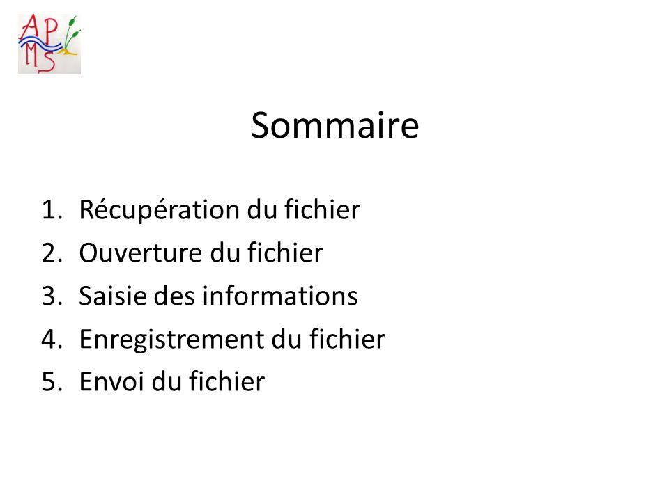 Sommaire 1.Récupération du fichier 2.Ouverture du fichier 3.Saisie des informations 4.Enregistrement du fichier 5.Envoi du fichier
