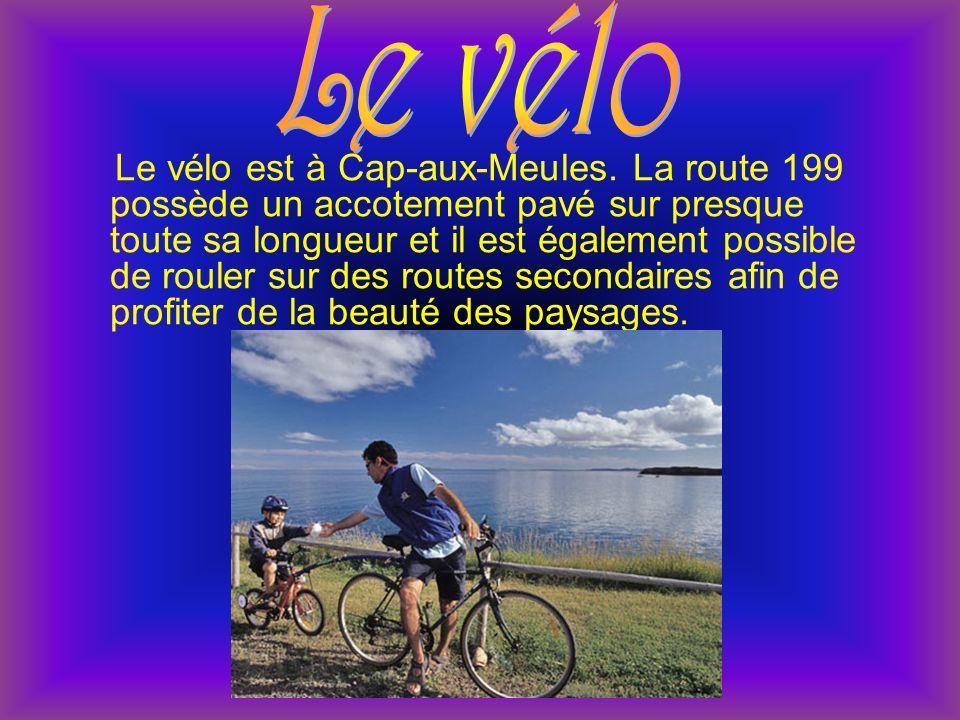 Le vélo est à Cap-aux-Meules.
