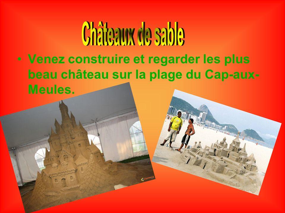 Venez construire et regarder les plus beau château sur la plage du Cap-aux- Meules.