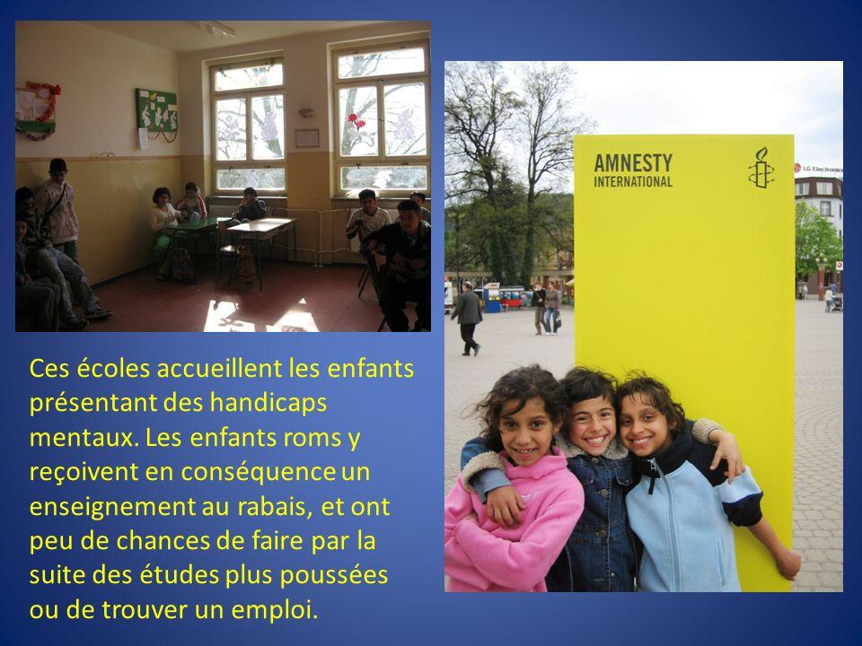 Ces écoles accueillent les enfants présentant des handicaps mentaux.